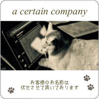 cs_no-img